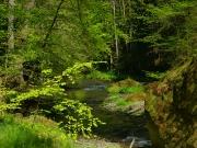 Elbsandsteingebirge im Mai_8