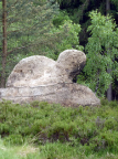 Schildkröte, Felsgebilde unmittelbar hinter der Töpferbaude bei Oybin